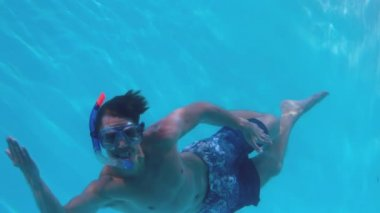 Fit man swimming underwater in the pool wearing snorkel — Stock Video