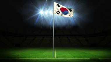 Korea republic national flag waving — Stock Video