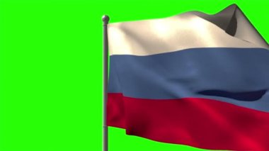 Russia national flag waving — Stock Video