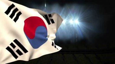 Large korea republic national flag waving — Stock Video
