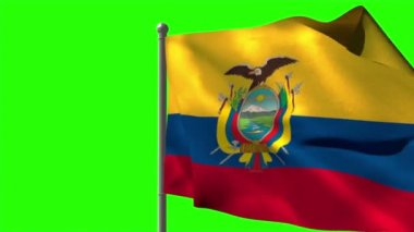 Ecuador national flag waving — Stock Video