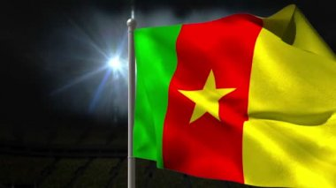 Cameroon national flag waving — Stock Video