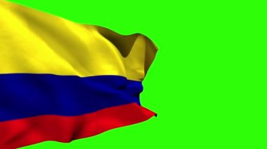 Large colombia national flag blowing — Stock Video