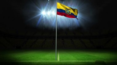 Ecuador national flag waving on flagpole — Stock Video