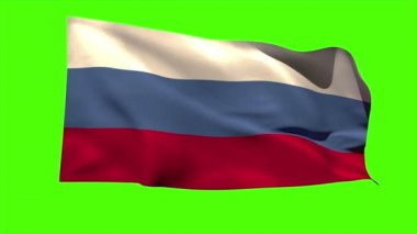 Russia national flag blowing — Vídeo de stock