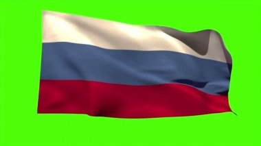 Russia national flag blowing — Stock Video