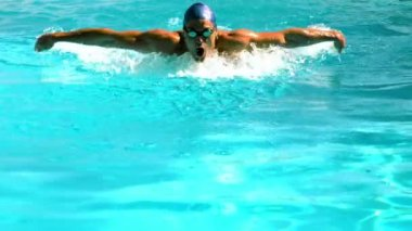 Fit swimmer doing the butterfly stroke in the swimming pool — Stock Video