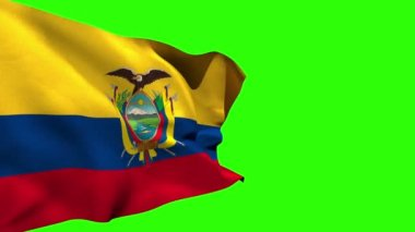 Large ecuador national flag blowing — Stock Video
