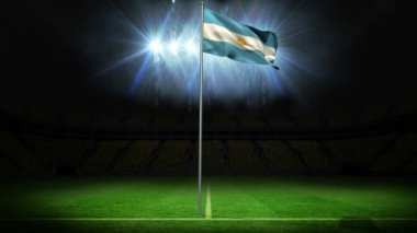 Argentina national flag waving on flagpole — Stock Video