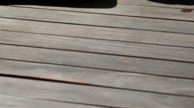 Sexy brunette lying poolside sunbathing — Stock Video