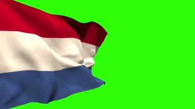 Large netherlands national flag blowing — Stock Video