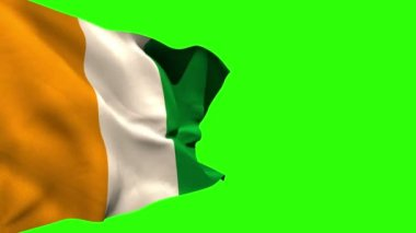 Ivory coast national flag blowing — Stock Video