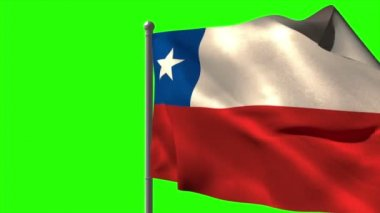 Chile national flag waving — Stock Video