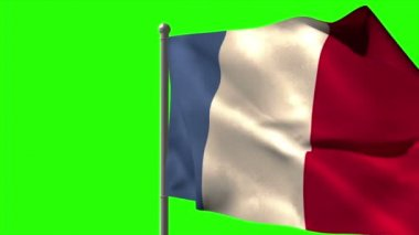 France national flag waving — Stock Video
