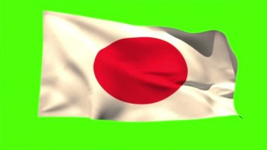 Japan national flag blowing — Video Stock