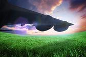 Airplane cast shadow — Stock Photo