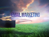 Businesswomans hand presenting the words email marketing — Stock Photo