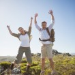Hiking couple jumping and cheering on rocky terrain — Stockfoto