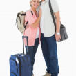 Smiling older couple going on their holidays — Stock Photo #50048335