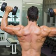 Rear view of shirtless muscular man exercising with dumbbells — Photo