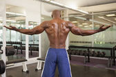 Rear view of a shirtless bodybuilder — Stockfoto