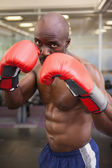 Muscular boxer in defensive stance — Stock Photo