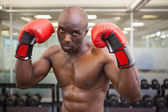 Shirtless muscular boxer in health club — Stock Photo