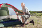 Happy camper setting up his tent — Stock Photo