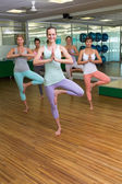 Smiling yoga class in tree pose in fitness studio — Stockfoto