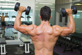 Rear view of shirtless muscular man exercising with dumbbells — Stock Photo
