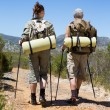 Hiking couple walking on mountain trail — Stock Photo #50050437