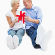 Happy mature couple holding a gift — Stock Photo #50058391