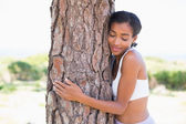 Fit woman hugging a tree — Stock Photo