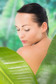 Beautiful nude brunette posing with green leaves — Foto de Stock