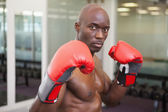 Muscular boxer in defensive stance in health club — Stock Photo