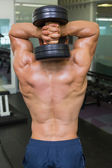 Rear view of a shirtless muscular man exercising with dumbbell — Foto Stock