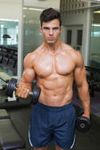 Shirtless muscular man exercising with dumbbells — Stock Photo
