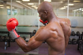 Muscular boxer in defensive stance in health club — Stok fotoğraf