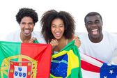 Happy football fans holding flags smiling at camera — Stock Photo