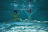 Pretty friends smiling and posing for camera underwater — Stock Photo