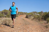 Athletic man jogging on country trail — Stok fotoğraf