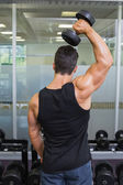 Rear view of a muscular man exercising with dumbbell — Stock Photo
