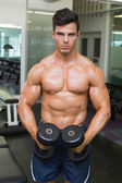 Shirtless muscular man flexing muscles with dumbbells in gym — Foto de Stock