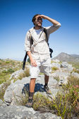 Hiker standing at the summit — Stock Photo