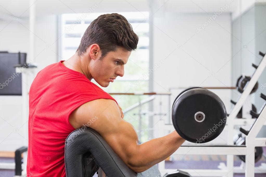 Hombre musculoso haciendo ejercicios con pesas en el - Imagenes de gimnasio ...