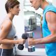 Fit couple lifting dumbbells together facing off — Stock Photo #50061543