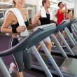 Row of people working out on treadmills — Stock Photo #50063267
