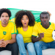 Excited football fans in yellow with brazil flag — Stock Photo #50064937