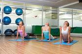 Yoga class in cobra pose in fitness studio — 图库照片