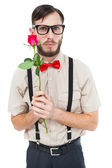 Geeky hipster offering a rose — Stock Photo